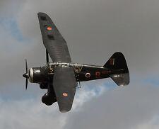 Giant 1/6 Scale British WW-II Westland Lysander Plans, Templates, Instructions