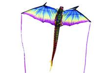 Einleiner  3D Drachen  -  Drachen   Neu