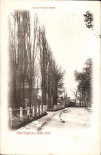 Mill Hill. The Poplars in Chester Vaughan Series.
