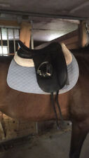 17.5� County Connection Dressage Saddle