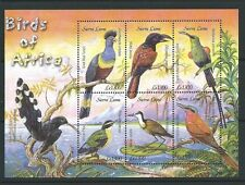 Birds Sierra Leonean Stamps (1961-Now)