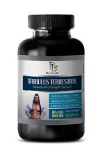 sexual enhancement, Tribulus Terrestris 45% Saponins, male enhancement pills 1B