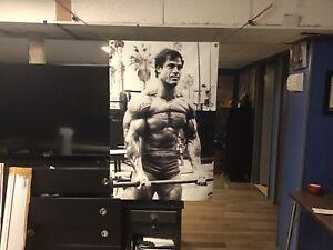 BIG! 44x30 FRANCO COLUMBU Vinyl BANNER POSTER bodybuilding   pumping iron Arnold