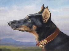 PAINTING ANIMAL PORTRAIT DOG REICHERT DOBERMANN ART PRINT POSTER LAH432A