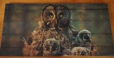 Large BARN OWL MOMMA & OWLET Wood Framed Canvas Lodge Cabin Home Decor Print NEW