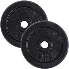 vidaXL 20kg Hantelscheiben Gewichte Scheibe Fitness Hanteln Krafttraining 2x10kg
