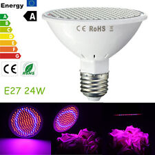 24W 200-LED Plant Grow Light E27 Red+Blue Hydroponic Flower Veg Growing Lamps