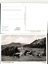 515078,Alpengasthof Bad Rain b. Oberstaufen im Allgäu Rinder