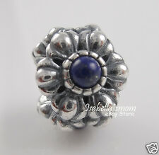 SEPTEMBER BIRTHDAY BLOOM Genuine PANDORA Silver/Blue LAPIS LAZULI Charm/Bead NEW