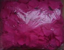 200 Individual HOT PINK Rose Petals Weddings~Celebrations~Party CLEARENCE SALE