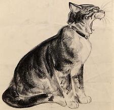 C1940s | Diana Thorne | original charcoal disegno di SBADIGLIO gatto | Stile Art Deco