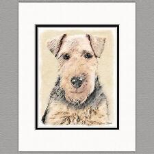 Welsh Terrier Dog Original Art Print 8x10 Matted to 11x14