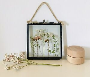 Pressed Flowers In Frame Handmade English Flowers