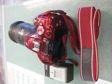 Nikon D5300 with DX 18-200mm lens