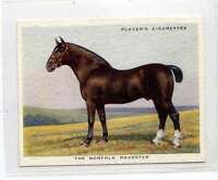 (Jl797-100) Players,Types Of Horses,The Norfolk Roadster,1939 #15