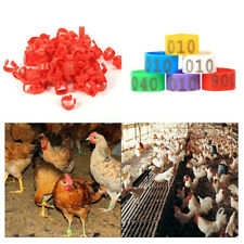 Hb- 100Pcs 001-100 Numbered Poultry Chickens Ducks Leg Bands Rings Birds Tool
