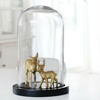 """Clear Glass Dome Display Centerpiece with Black Base, 9.5"""", 16"""", 21"""", 25"""""""