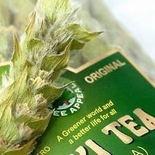 22g pack Mursalski Tea - Mountain Tea - Shepherd's Tea (Sideritis scardica)