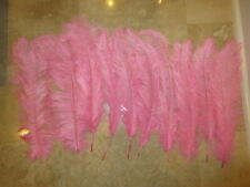 """10 Pieces Pink OSTRICH FEATHERS Approximately 20"""" in Length Decorations Wedding"""