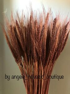 """100 STEMS DRIED WHEAT/RYE BOUQUET FOR FLOWERS ARRANGING READY TO USE BROWN 20"""""""