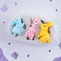 Silicone Rabbit Mold Cake Soap Moulds Sugar Craft Tool Chocolate Clay W