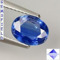 SI - 1.46ct !!! KYANITE DU NÉPAL !!! lumineux bleu cachemire - poli AAA++