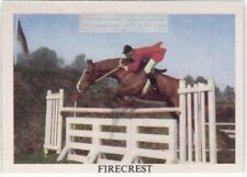 """""""Firecrest"""" British Show Jumping Horse Sport Equine Vintage Ad Trade Card"""