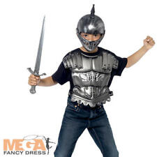 Medieval Knight Kit Boys Fancy Dress Tudor Armour Kids Book Costume Accessory