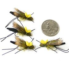 Beaverhead River Long Tail Squalla Stonefly Hatch Dry Fly 4 Flies Size 10