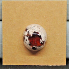 Mexican Fire Opal Cabochon 17.5x15.5mm with 10mm dome (14560)
