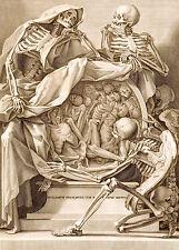 Repro Anatomical Print by Bernadino Genga 1691