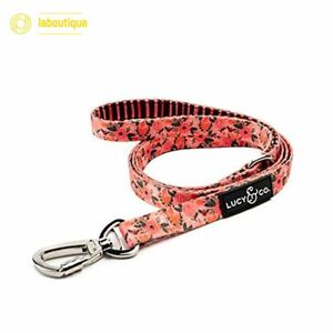 Lucy & Co 5 Foot Leash Best Designer Big Small Medium Dogs Puppy All Breeds