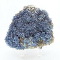 Cubic Fluorite, crystal, cluster, specimen, display, blue, #R-1755