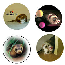 New listing Ferret Magnets: 4 Way-Cool Ferrets for your Fridge or Collection-A Great Gift