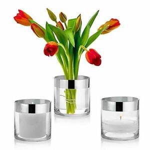 Set of 3 Glass Cylinder Vases 4 Inch Tall with 1 Inch Silver Rim - Multi-use:
