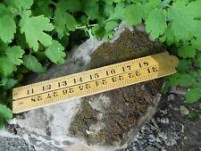 Ancien mètre dépliable en 4  Holland C.K deux mesures 36 et 91 cm