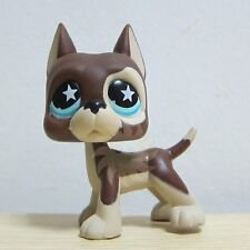 Littlest Pet Shop LPS Toy Chocolate Brown Cream Great Dane with Star Eyes #817