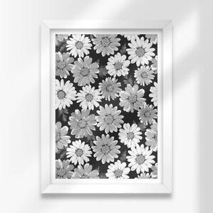 A3 White Framed Prints - BW - Daisy Floral Flowers Garden 42X29.7cm #38382