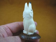 tne-wol-324-d) white howling Wolf Tagua Nut Figurine Carving Vegetable wild dogs
