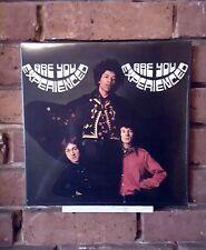 Jimi Hendrix: Are You Experienced (VINYL)