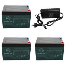 3x 12V 12AH Battery + 1X 36V Charger 1.8A Electric scooter bike Go kart ATV