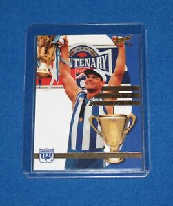 1997 Select AFL North Melbourne 1996 AFL Premiership Rare Mystery Card MINT