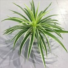 Artificial Plastic Silk Chlorophytum plant Indoor potted table decoration NO Pot