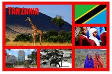 Tanzania, Africa - Negozio di souvenir novità Magnete del frigorifero - REGALI /