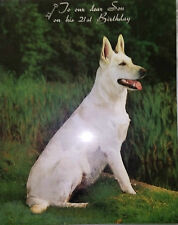 Happy 21st Birthday Son Vintage 1970's White Alsation German Shepherd Dog Card