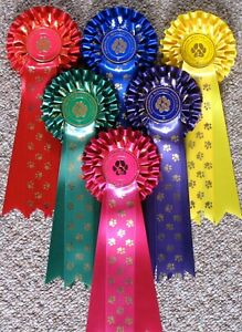 Dog Show Rosettes 10 x 1st to 5th TWO TIER PAWS plus BIS & RBIS 3 tier PAWS