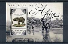 Libéria 2012 MNH la faune d'Afrique 1v s/s éléphants animaux sauvages timbres