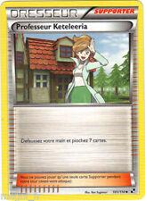 Pokemon  n° 101/114 - Dresseur - Professeur Keteleeria