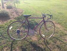 Vintage Sears 10 Speed Bicycle
