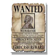 Weimaraner Wanted Poster Fridge Magnet New Dog Funny